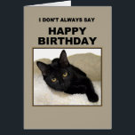 """Black Cat Birthday Humor Card<br><div class=""""desc"""">A black cat wishes happy birthday to only the finest people.</div>"""