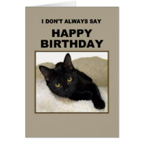 Black Cat Birthday Humor Card