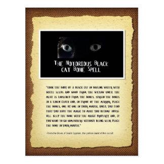 Black Cat Bone Spell Postcard