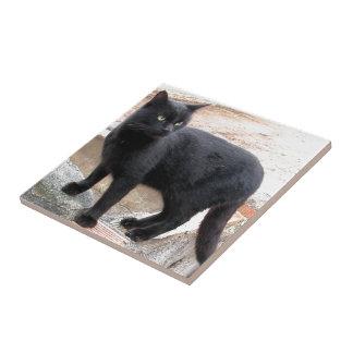 Black Cat Bone Ceramic Tile