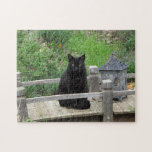"""Black Cat Bridge Puzzle<br><div class=""""desc"""">This puzzle is perfect for cat lovers. It shows a black cat with yellow eyes sitting next to a lantern on a garden bridge with early spring flowers around him. Blackie, the cat, wakes up each morning and goes over to this little bridge and sits there for quite some enjoying...</div>"""