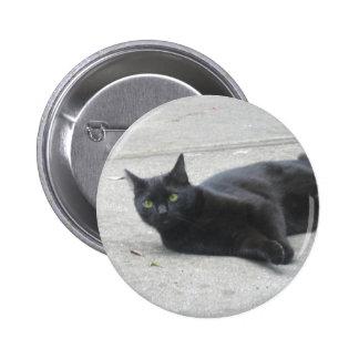 Black  Cat Button