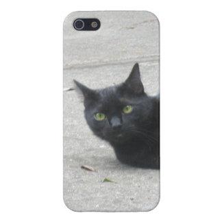 Black Cat Cases For iPhone 5
