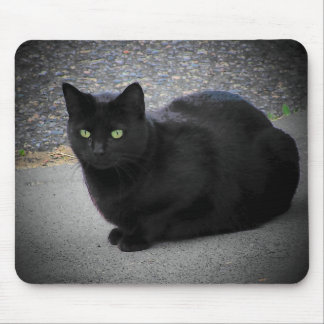 Black Cat Caught in a moon beam Mouse Pad