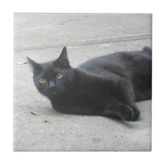 Black  Cat Ceramic Tile