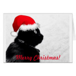 Black Cat Christmas Card