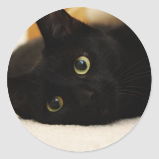 Black Cat Classic Round Sticker