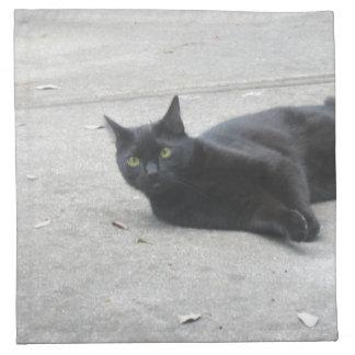 Black  Cat Cloth Napkins