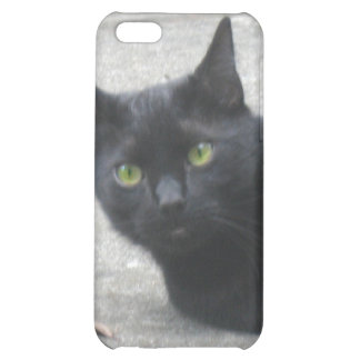 Black  Cat Cover For iPhone 5C
