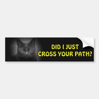 Black Cat crossed you path Bumper Sticker