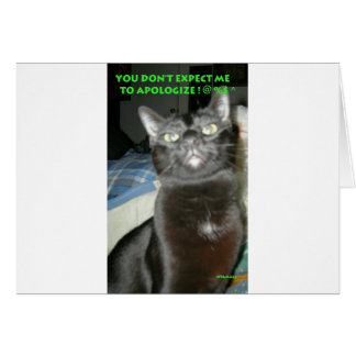 BLACK CAT , DON'T EXPECT ME TO APOLOGIZE CARD