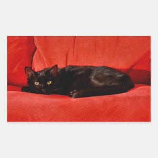 Black Cat Edgar Rectangular Sticker