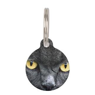 Black Cat Eyes Pet ID Tags