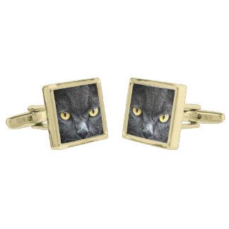 Black Cat Eyes Gold Cufflinks