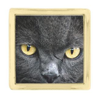 Black Cat Eyes Gold Finish Lapel Pin