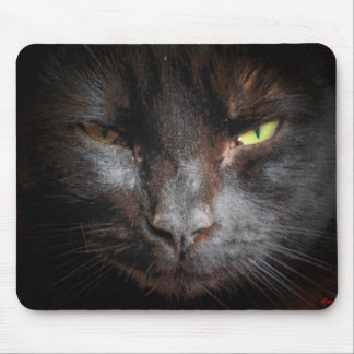 Black Cat Face Close Up Mouse Pad