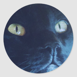 Black Cat Face Sticker