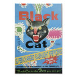 Black Cat Fireworks Poster at Zazzle
