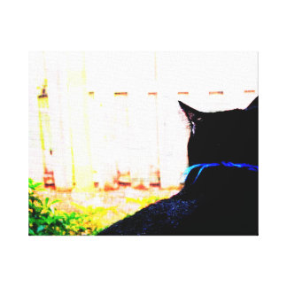 Black Cat From Back Looking Out Window Canvas Print