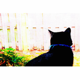 Black Cat From Back Looking Out Window Acrylic Cut Out