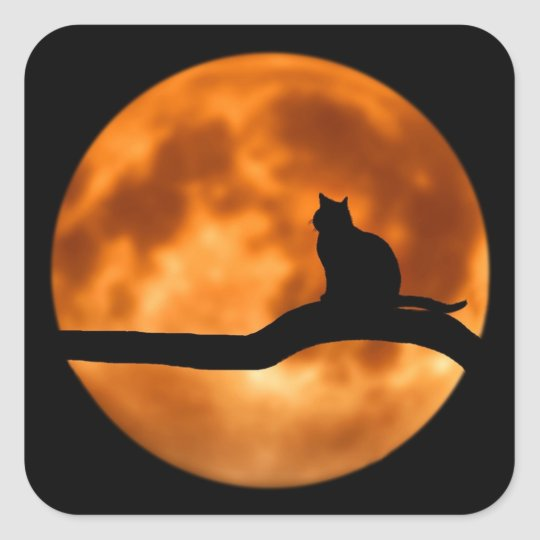 Black Cat Full Moon, Tree, Orange/ Black Halloween Square Sticker