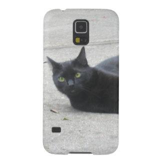Black Cat Galaxy Nexus Covers