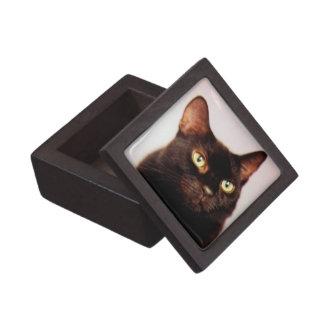 Black Cat Gift Box