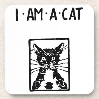 Black Cat Gifts Drink Coaster