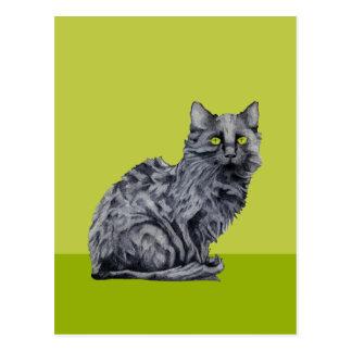 Black Cat green Postcard