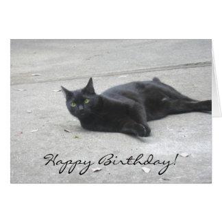 Black  Cat Greeting Card