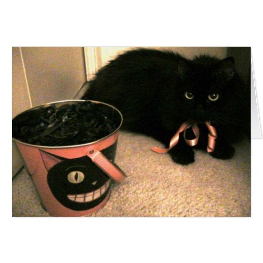 Black Cat Halloween note card