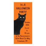 Black Cat Halloween Party Invitations