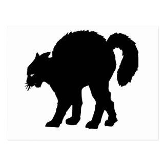 black cat halloween postcard