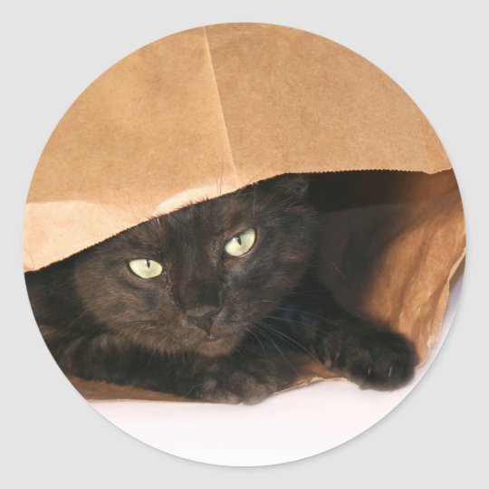 Black cat in a bag sticker