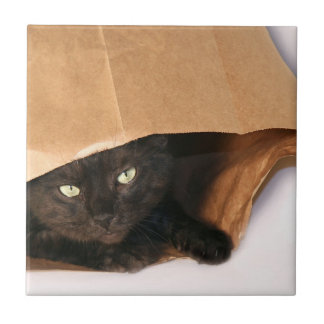 Black cat in bag tile