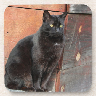 Black Cat in Deep Thought Coasters