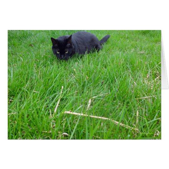 Black Cat In Grass Birthday Card