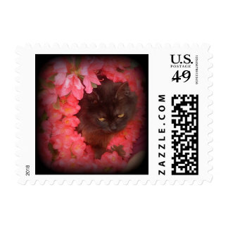 Black Cat in Lei Stamp