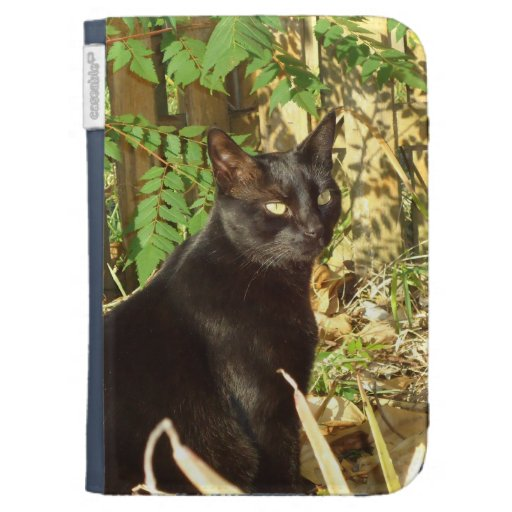 Black Cat in Morning Sun Case Kindle Keyboard Covers