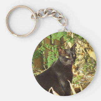 Black Cat in Morning Sun Keychain