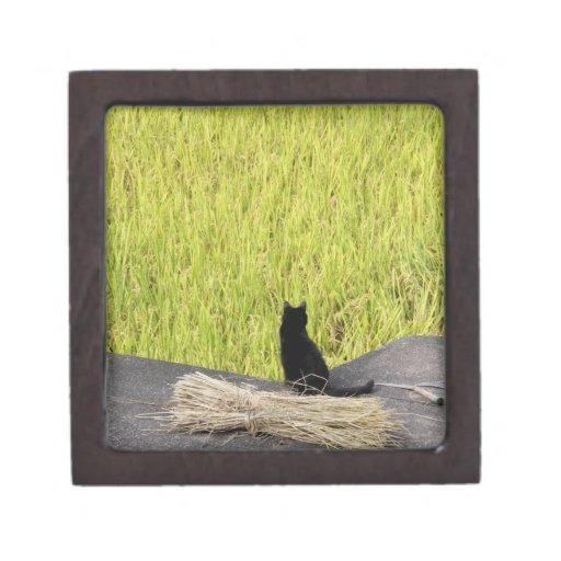 Black Cat in Rice Paddy Premium Keepsake Box