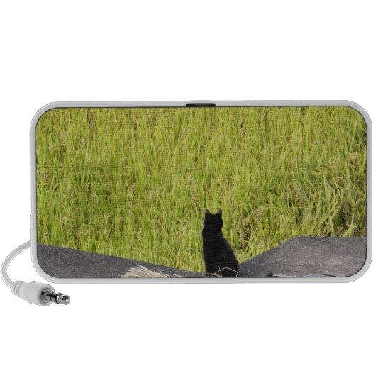 Black Cat in Rice Paddy Speaker