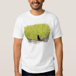 Black Cat in Rice Paddy T Shirt