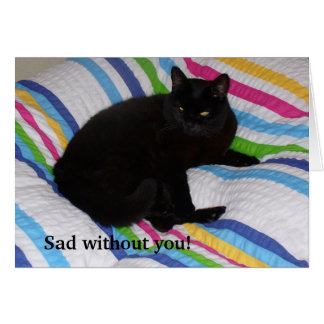 Black Cat in the Bed - Card