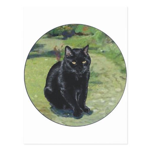 Black Cat in the Garden Post Card