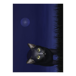 Black cat in the night card