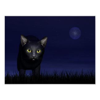 Black cat in the night poster