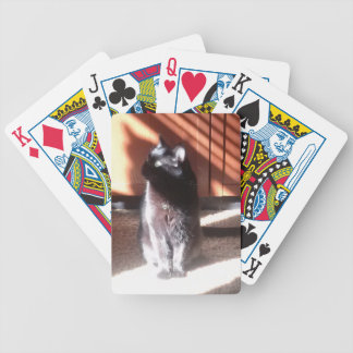 black cat in thought bicycle playing cards