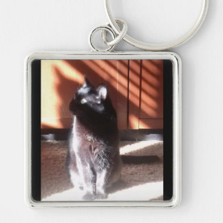 Black Cat in thought Silver-Colored Square Keychain