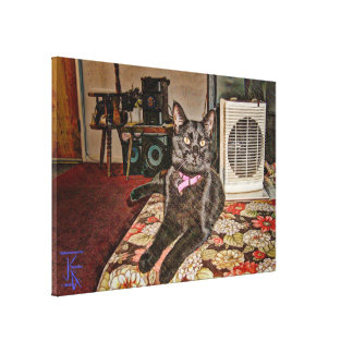 Black Cat in Winter Warmth Canvas Print